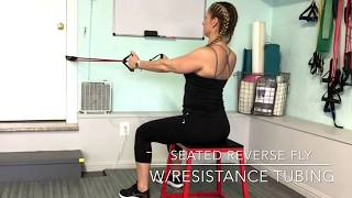 Seated reverse fly