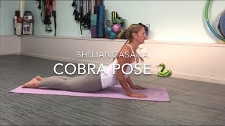 increase spinal flexibility with cobra pose • julie's